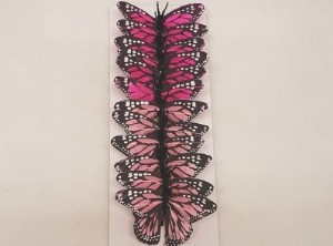 Butterflies and Stick on Items